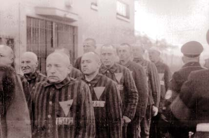 pink_triangle-sachsenhausen-concentration-camp-1938-national-archive